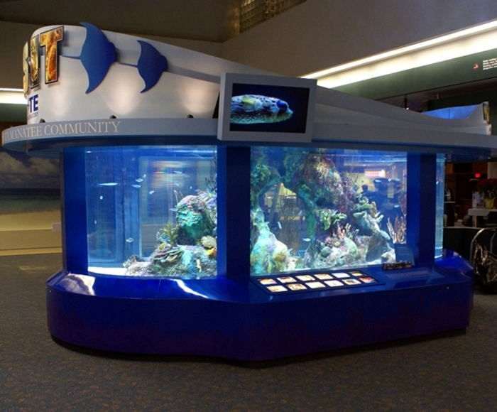 MOTE Marina Display - SRQ Airport in Sarasota - Real