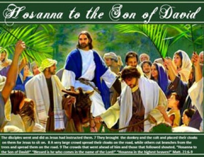 Hosanna image of Jesus with verse Palm sunday