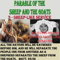 Parable of the Sheep and Goats – 3 – Sheep-like Service