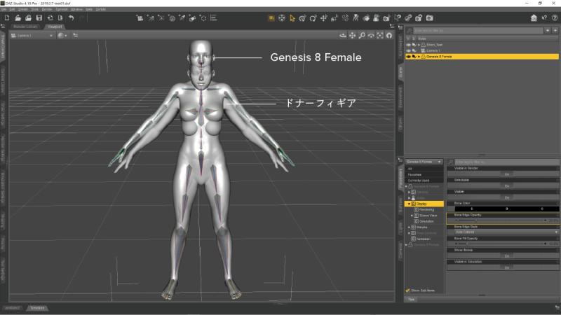 Genesis 8 Female を配置