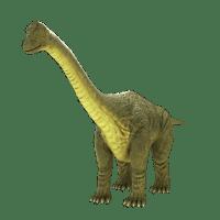 Brontosaurus 3D Model - VR - AR Ready