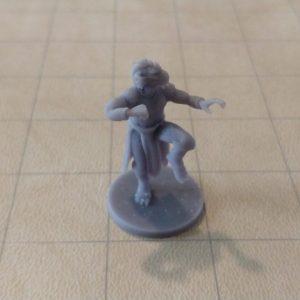 Adventurers/NPCs Dragonborn Male Monk