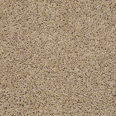 simple-times-sun-glitz-carpet-by-shaw_swatch