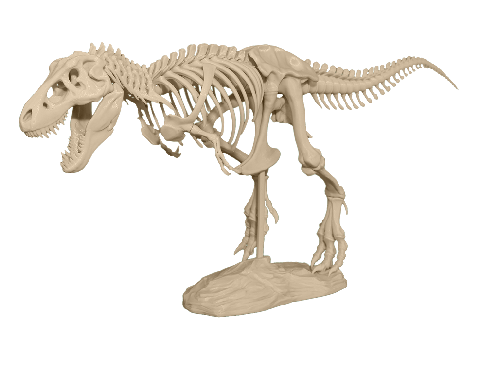 You Can Now 3d Print Your Own 79 Piece T Rex Skeleton