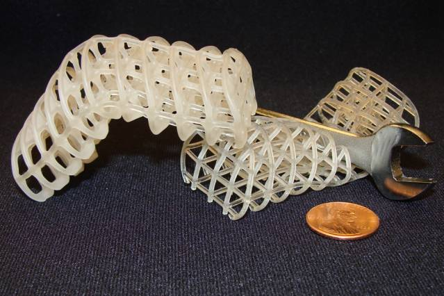 Two 3D-printed soft, flexible scaffolds