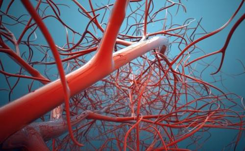 blood-vessel_650x400_61445856312