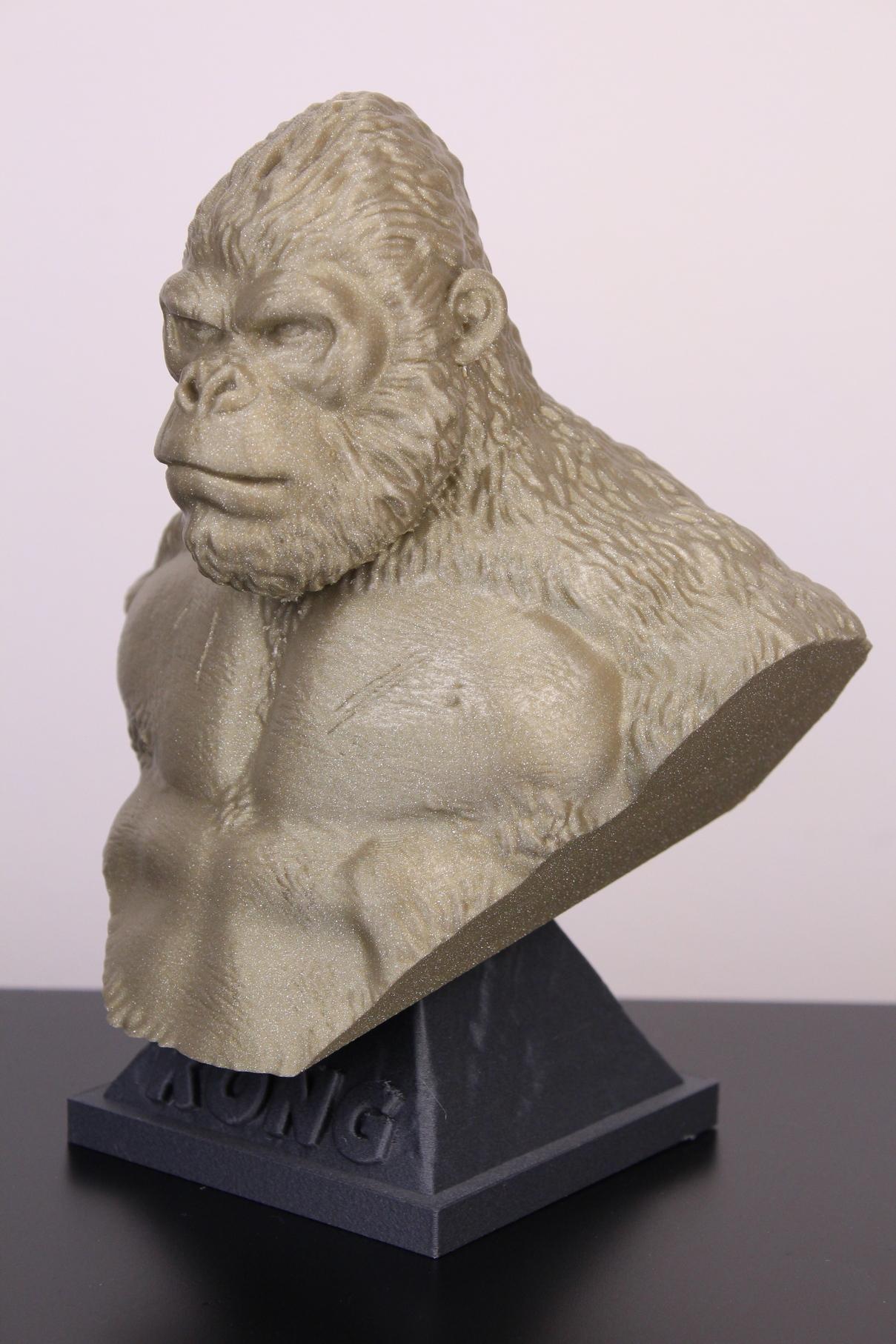Kong-printed-on-Fysetc-Prusa-Mini-Clone-12