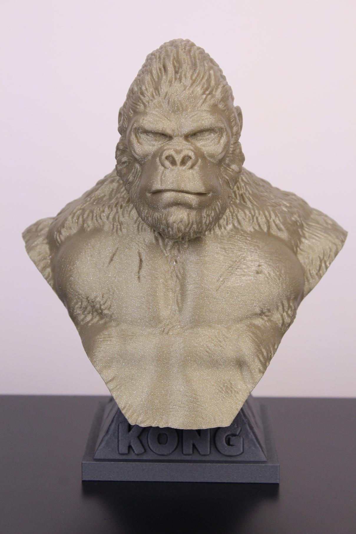 Kong-printed-on-Fysetc-Prusa-Mini-Clone-13