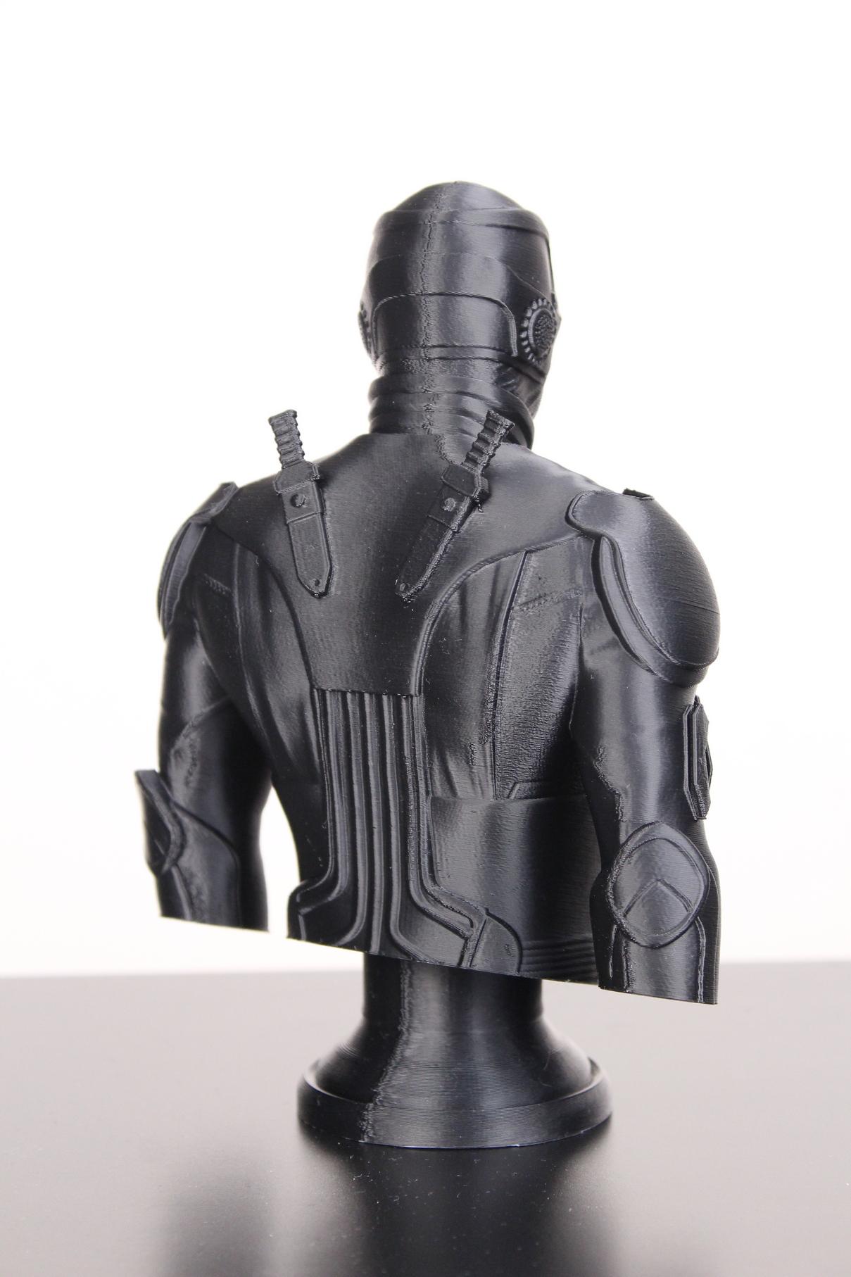 Black-Noir-Bust-on-Sermoon-D1-ABS-print-5