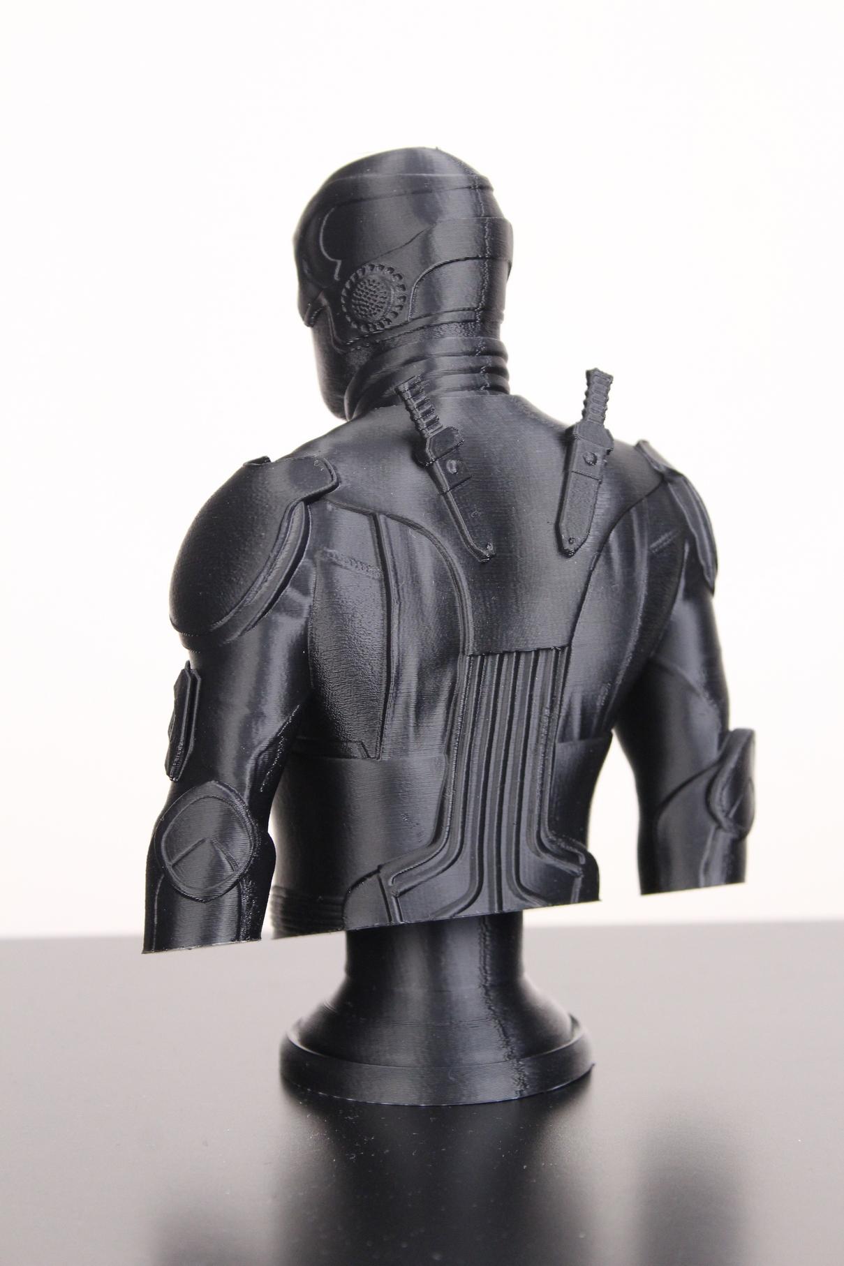 Black-Noir-Bust-on-Sermoon-D1-ABS-print-6