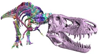 Trix T Rex 2