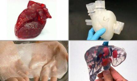 3d printed organs