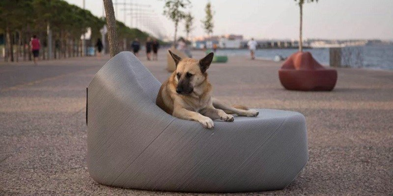 A dog sits on a 3D printed street sofa.