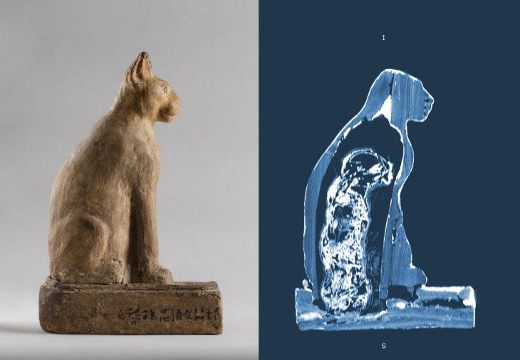 archeologia invisibile  - museo egizio - TAC mummia di gatto