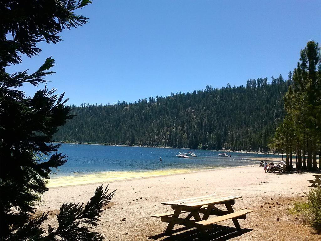 beach nature social media detox