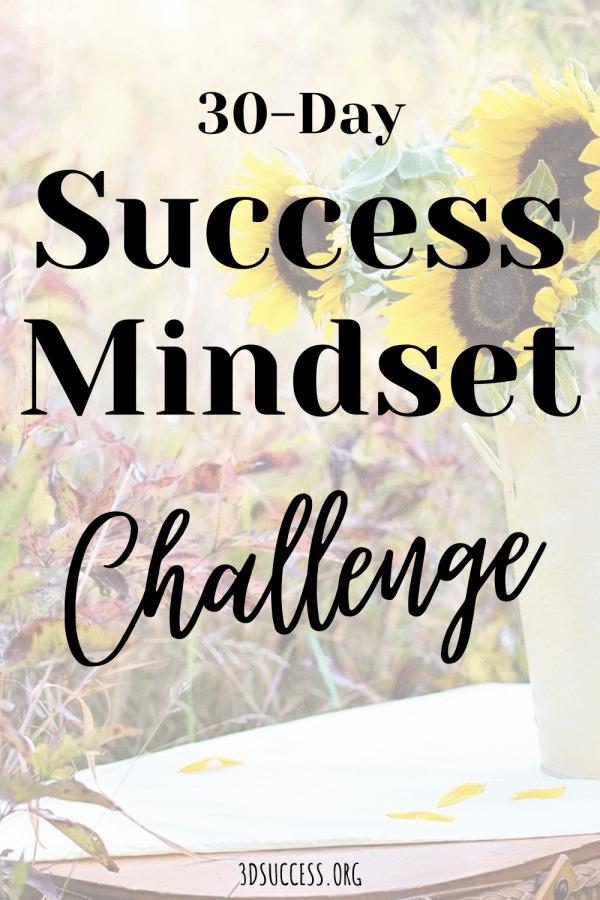 30 Success Mindset Challenge Pin