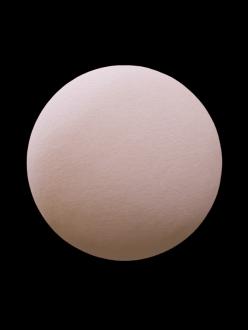 skin human