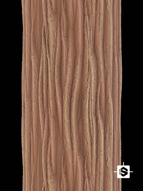 wood bark tree