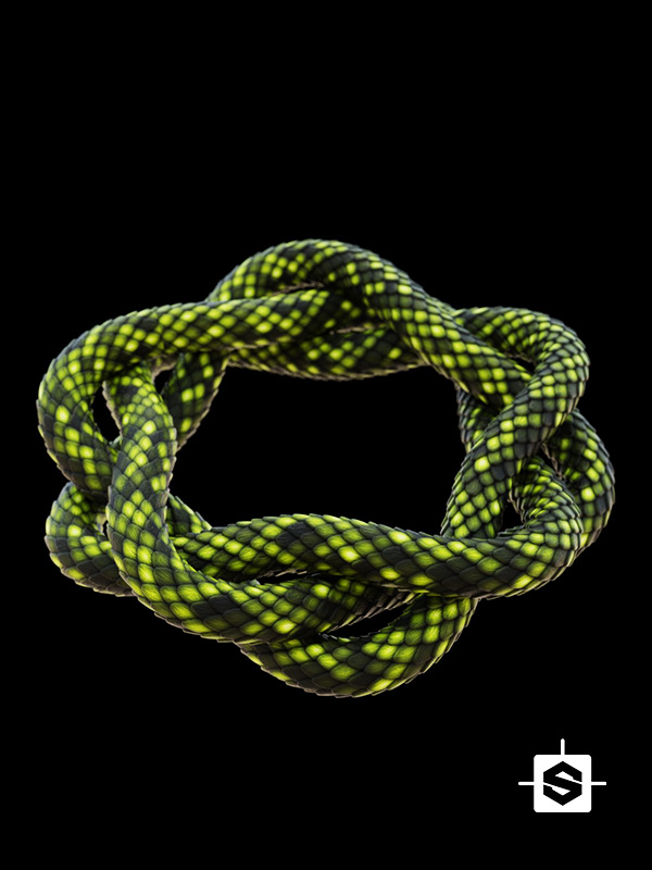 stylized scales snake lizard reptile