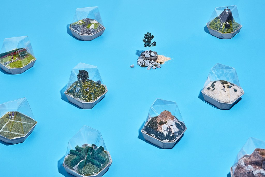 small terrariums created with a Mayku FormBox