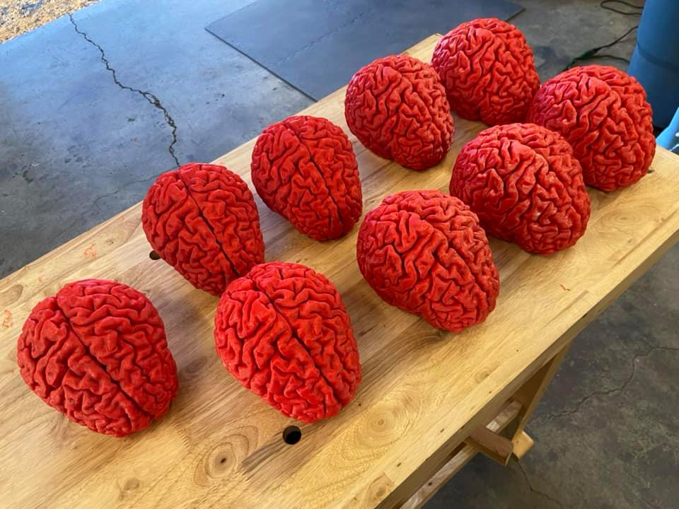 3D printed brains for NW Noggin from MakerForce