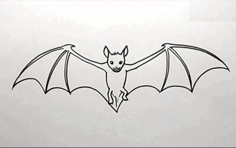 How to Draw a Bat Easy