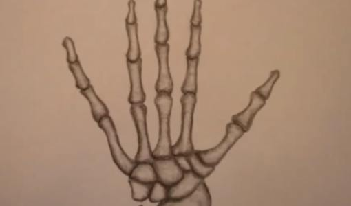 skeleton hand drawing