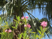 VILLA FOR SALE IN BEAUTIFUL KARGICAK ALANYA