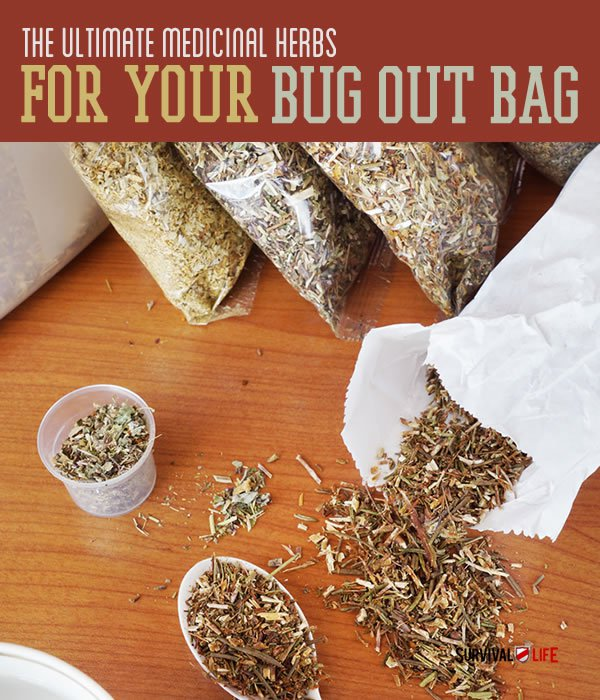 Placard | The Top Ultimate Medicinal Herbs For Your Bug Out Bag