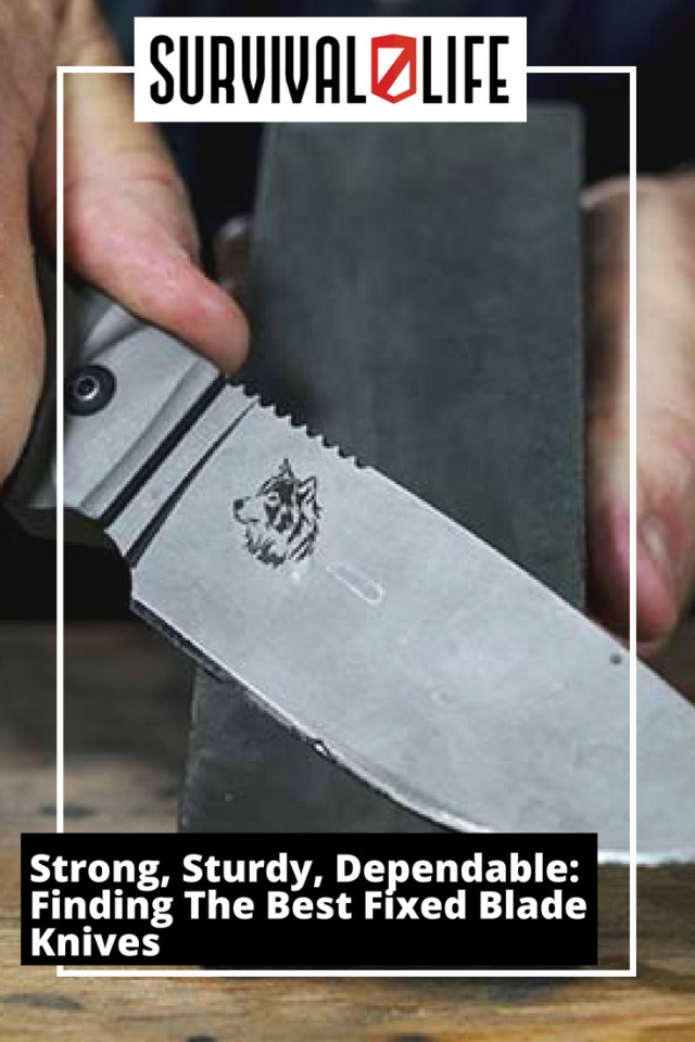 Placard | | Strong, Sturdy, Dependable: Finding The Best Fixed Blade Knives