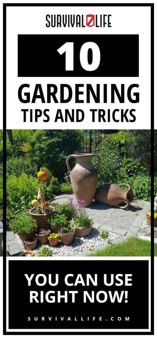 Placard | Gardening Tips | 10 Gardening Tips and Tricks You Can Use Right Now! | garden help