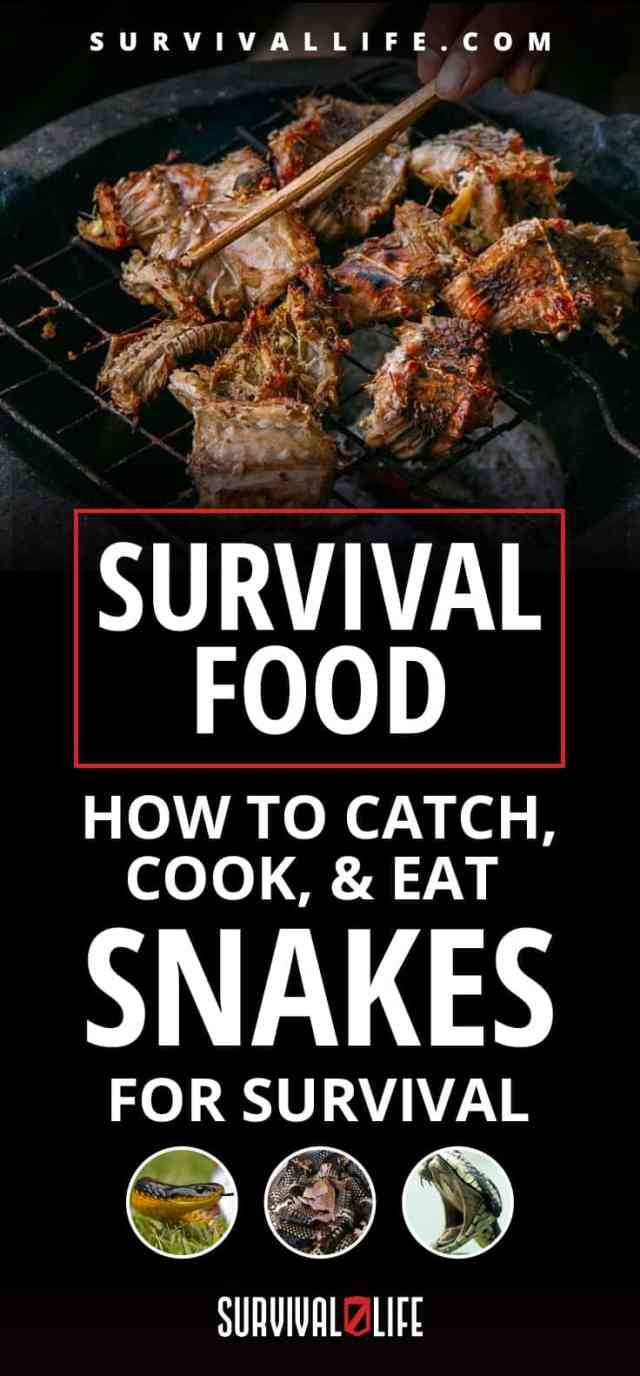 Placard   Survival Food   How To Catch, Cook, & Eat Snakes For Survival