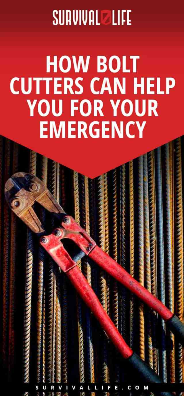 Placard | How Bolt Cutters Can Help You For Your Emergency