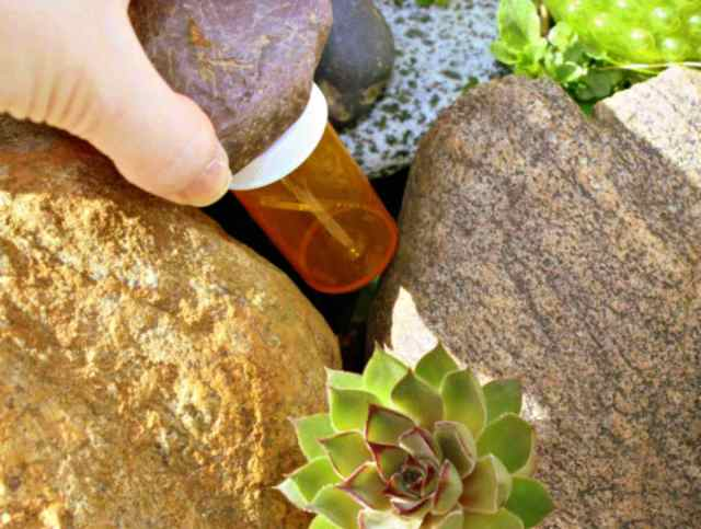 rock on top of the bottle   Ultimate Survival Tips   Uses For An Empty Pill Bottle
