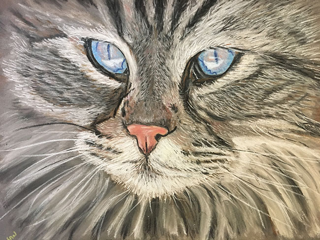Cat in pastel painting