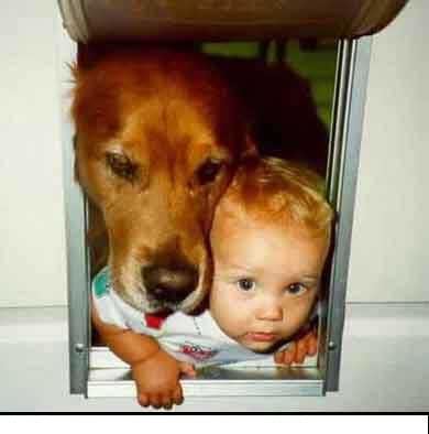 Funny Baby pictures & photos # 18
