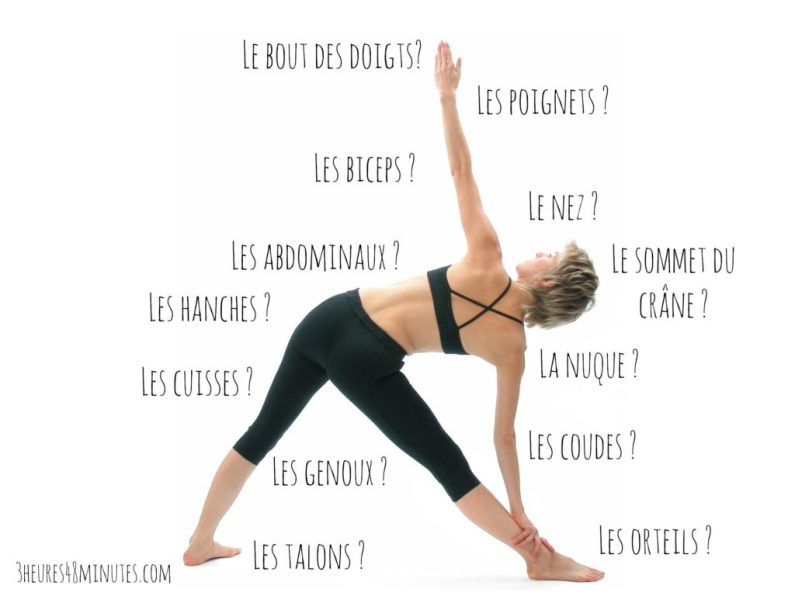 Les-parties-du-corps-importantes-en-yoga
