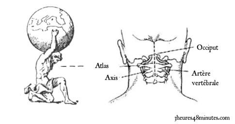 atlas occiput
