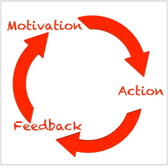 Gamification engagement loop
