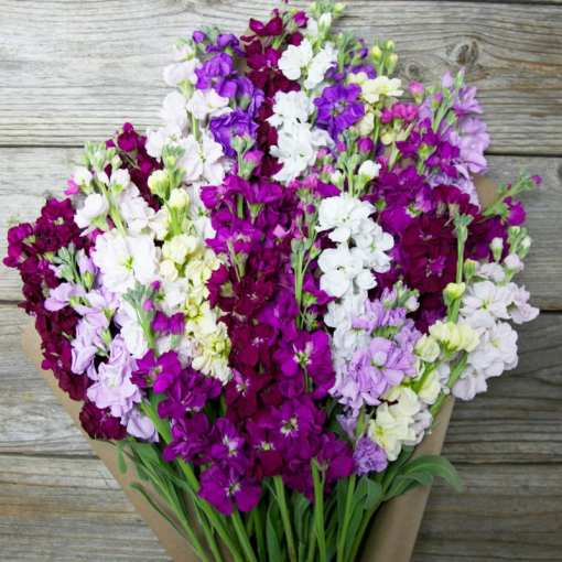 9 Best Mothers Day Flowers Delivery 2018   Bouquet Flower Delivery     mothers day flowers 2016 delivery spring for mom