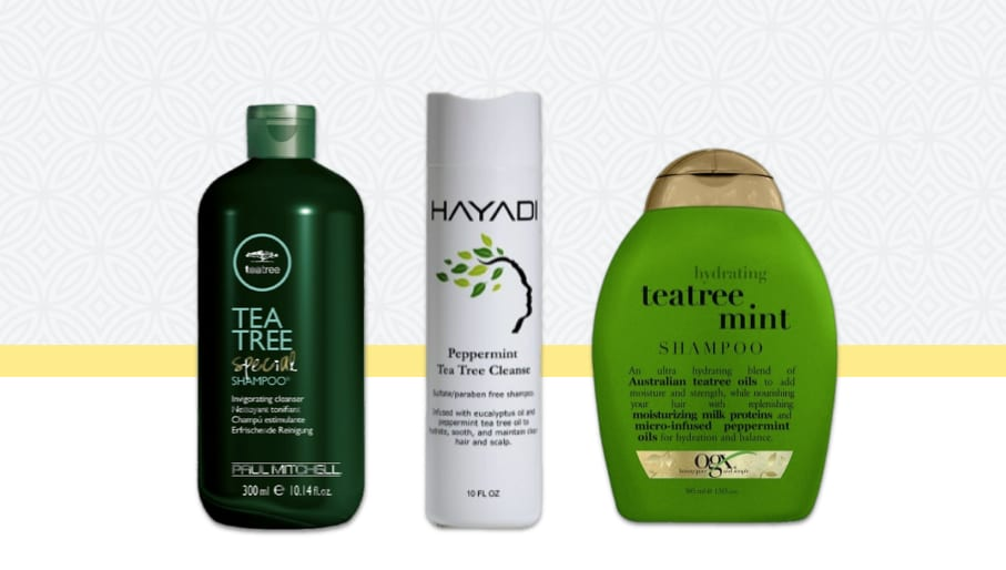 Image Result For From Where I Can Buy Tea Tree Oil