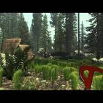 The Forest Part 1 – A New Beginning