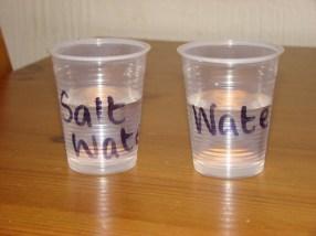 Water/Salt Water experiment