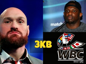 Tyson Fury, Dillian Whyte and WBC logo