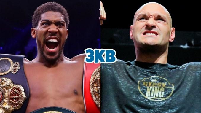 Unified World Heavyweight champion Anthony Joshua, WBC World Heavyweight champion Tyson Fury