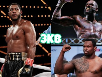 (clockwise from left) Michael Hunter in the ring during a match, Deontay Wilder poses in victory, Dillian Whyte poses for the press