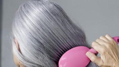 صورة التخلص من الشعر الابيض بطرق طبيعية آمنة تمامًا على صحتك وفروة رأسك