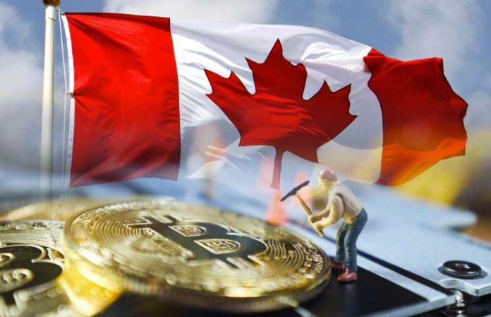 Bitcoin-Mining-Firm-From-Canada-Surprises-the-Market-with-Record-Revenue-During-Q3