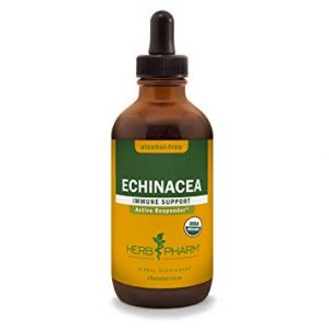 Herb Pharm Organic Echinacea Glycerite - FREE SHIPPING with AMAZON PRIME