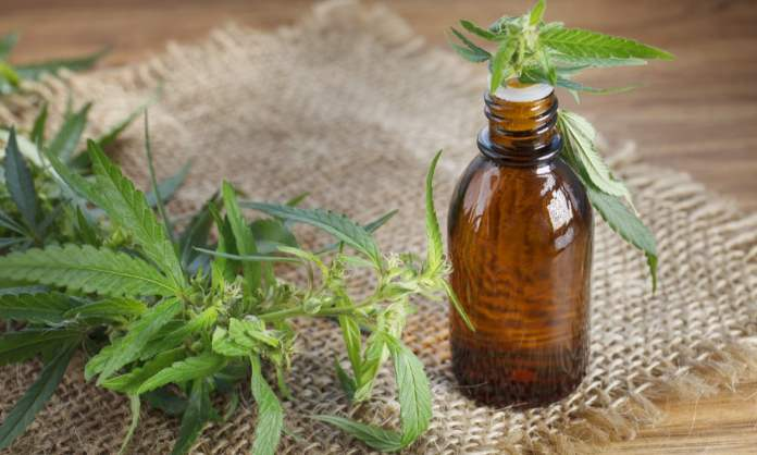 report-woman-cures-terminal-cancer-with-cannabis-1
